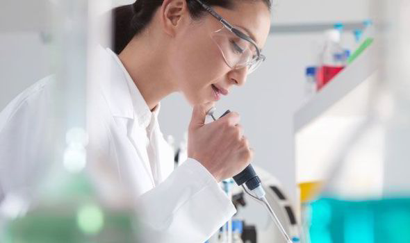 China In Vitro Diagnostic Market Promising development scope 2025
